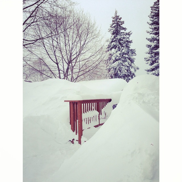 where did our back porch go?