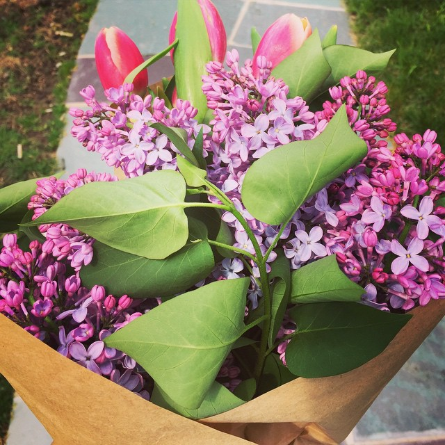 happy mother's day weekend to all the moms out there! #handpickedlilacs