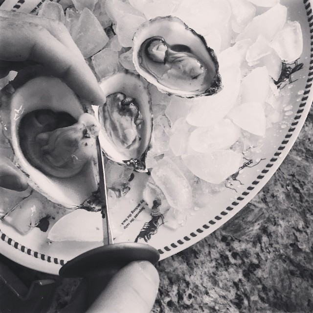 home-shucked oysters (!!)