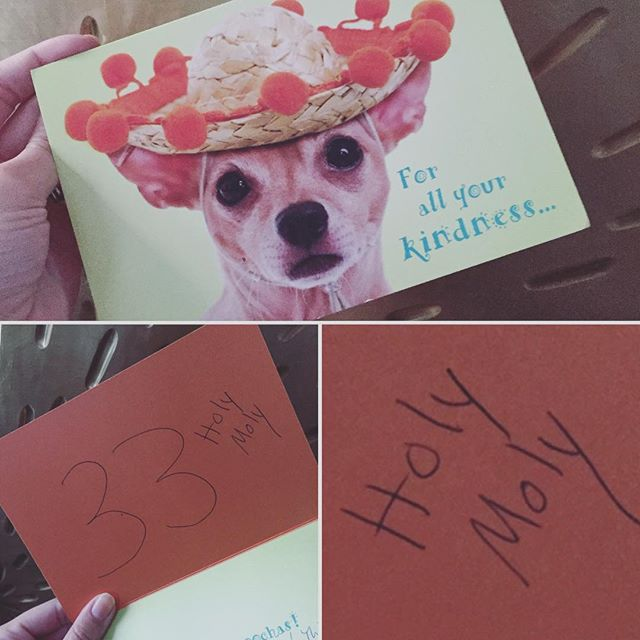 moms are the best #mommademelaugh #holymoly #chihuahualife